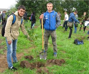 Наш лес_Посади дерево 2015_1