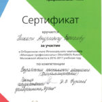ws-efimov-na